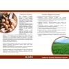 Производители картофеля в Украине,  приглашаем!