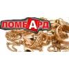 Сдать золото в ломбард в Киеве,  деньги под залог золота