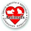 Администратор салона красоты для животных