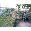 дом 6х6,  10сот. ,  Ивановка,  колодец,  со всеми удобствами,  газ