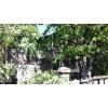 Недорого продается.  уютный дом 7х7,  8сот. ,  Ясногорка,  газ,  заходи и живи