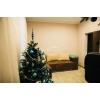 Торг!  2-к квартира,  центр,  Академическая (Шкадинова) ,  евроремонт,  с мебелью,  встр. кухня,  быт. техника,  Свет , вода