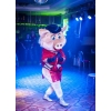 шоу свинки Лолита