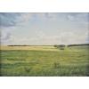 """Продается картина """"Степные просторы.      Август"""",       масло,       холст,       36х49"""