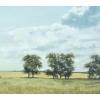 "Продается картина ""В степи.   Август"",  33,  8х60,  2"