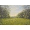 "Продается картина ""Весенняя долина на Брусино,  Май"",  масло,  холст,  30, 5х43, 3"